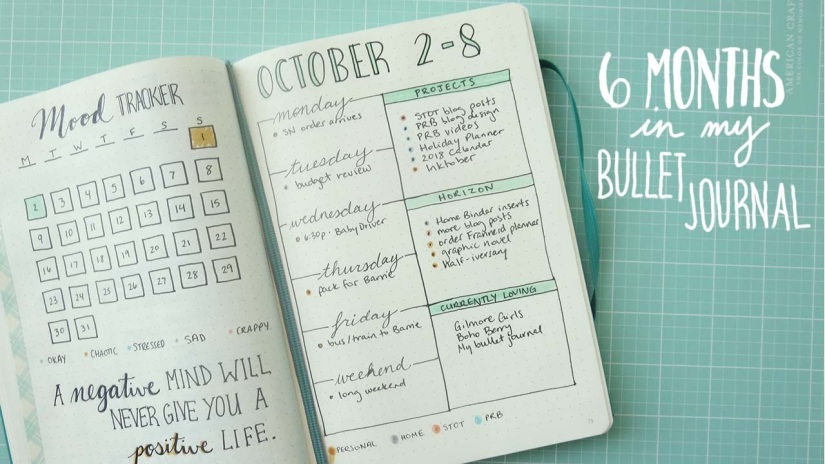 Check out my 6 Months in my Bullet Journal video!